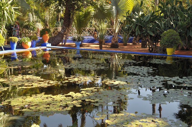 Jardin Majorelle in Marrakech royalty free stock image