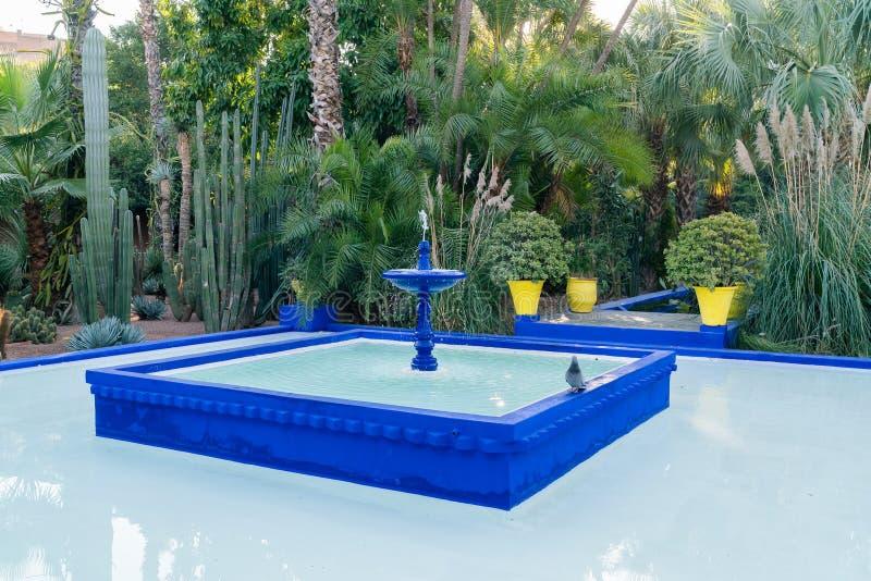 Jardin Majorelle por Yves Saint Laurent imagem de stock