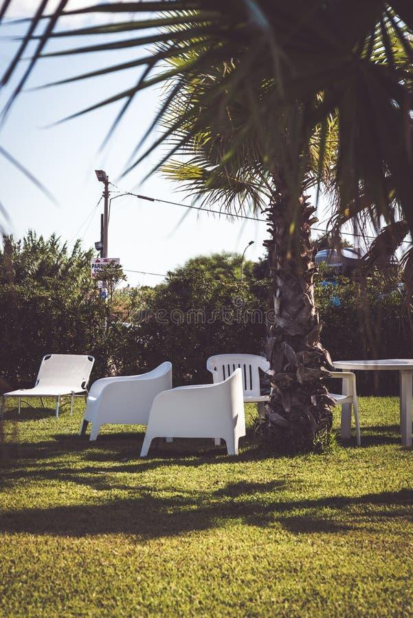 Jardin merveilleux avec des palmiers et des fauteuils confortables employés par des touristes pour prendre un apéritif de détente photo stock