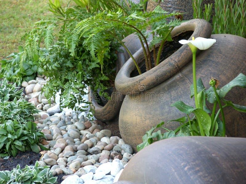Jardin mis en pot vert photo libre de droits