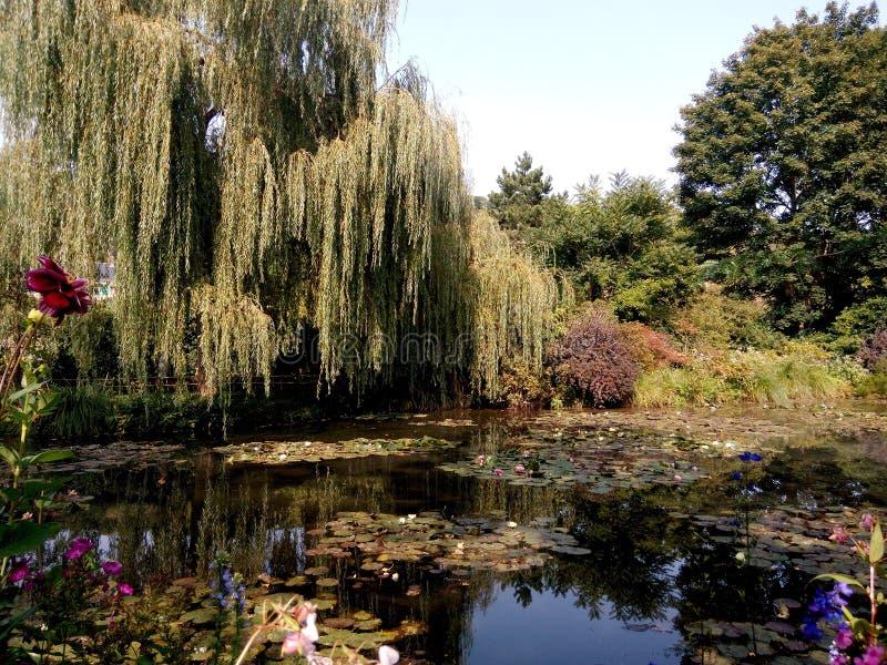 Jardin Mone image libre de droits