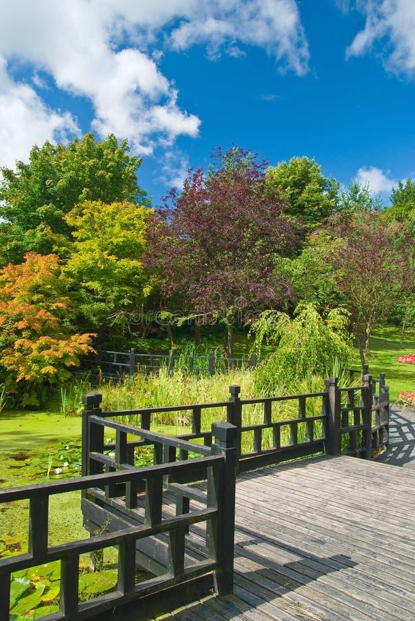 Jardin oriental image stock image du path voie lilly for Jardin oriental