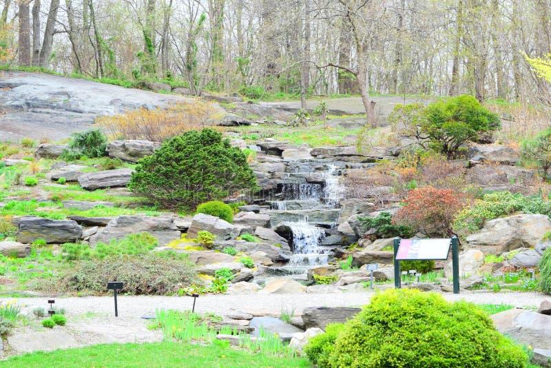 Jardin ou parc avec la mini cascade images libres de droits