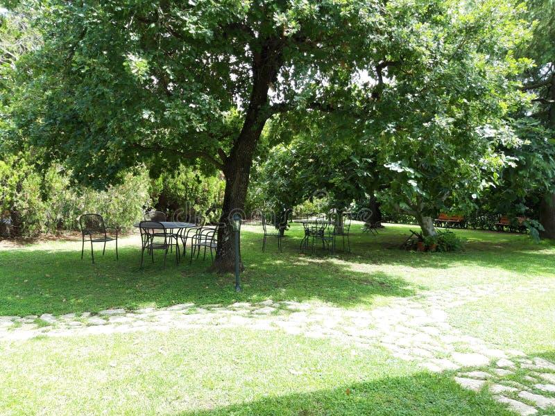 Jardin paisible à détendre photos libres de droits