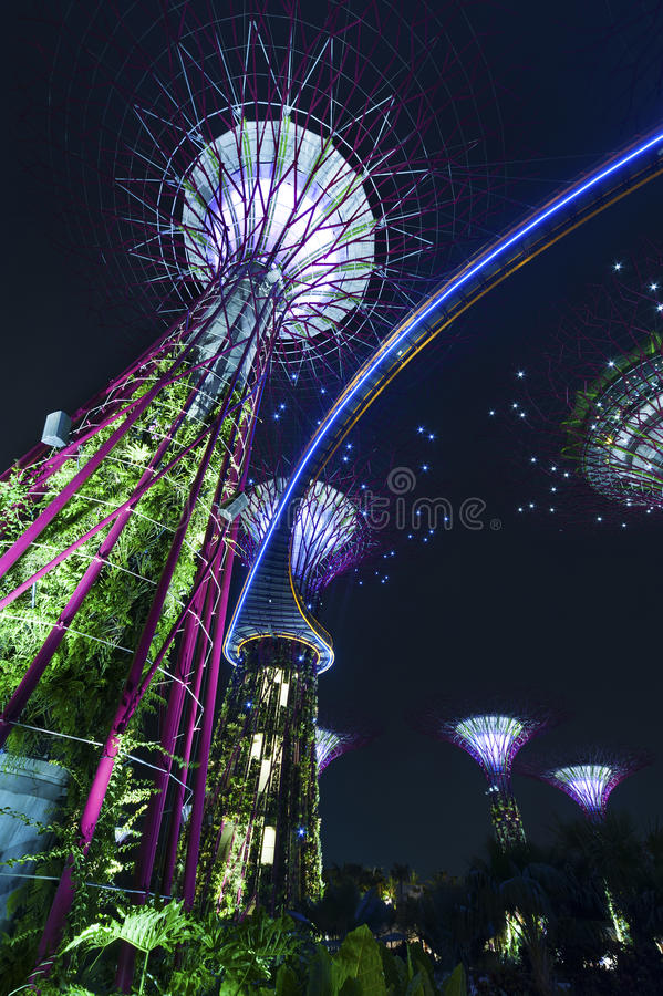 Jardin par la baie Singapour photographie stock libre de droits