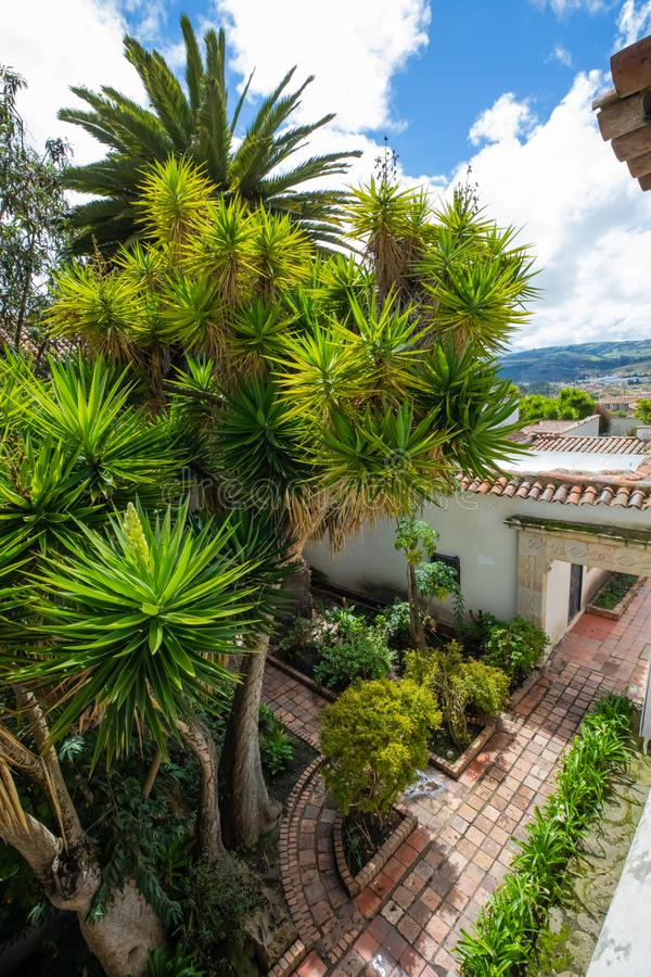 Jardin public tropical de Tunja d'en haut images stock