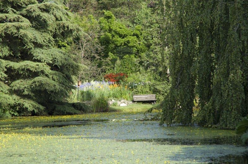 Jardin rêveur images libres de droits