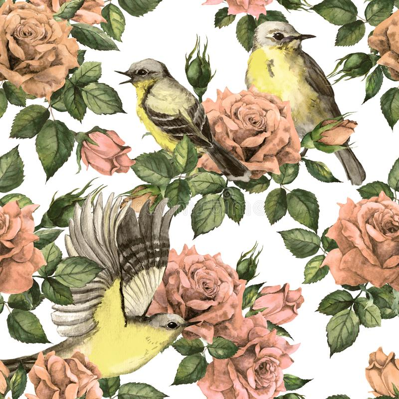 Jardin secret - fleurs roses de roses, oiseaux Fond floral sans joint Aquarelle en pastel dans des couleurs pâles de cru illustration de vecteur