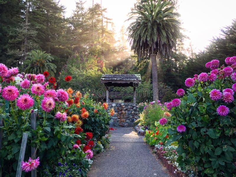 Jardin souhaitant bien photographie stock