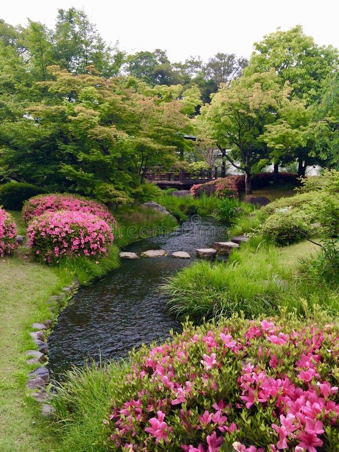 Jardin traditionnel japonais photos stock