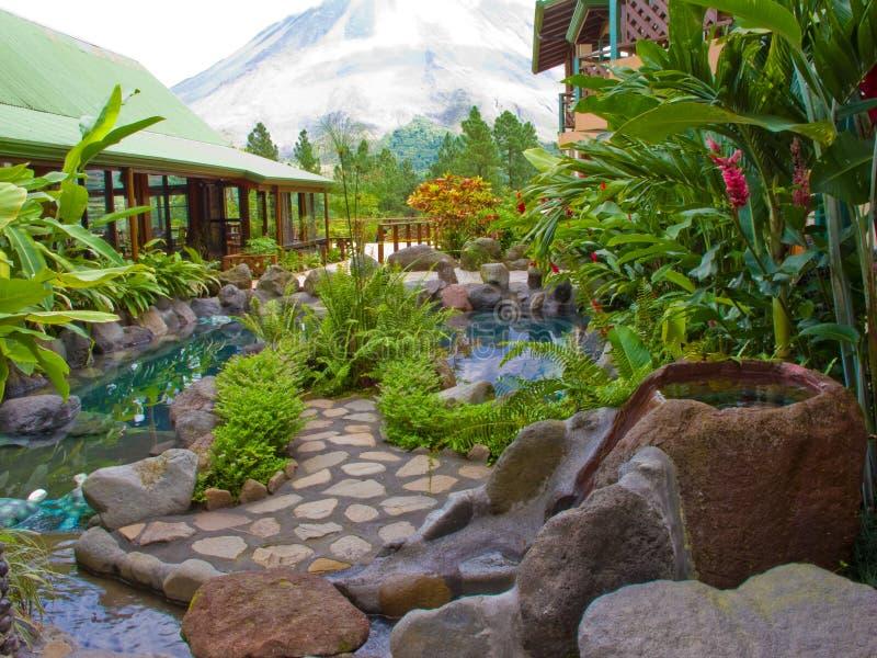 Jardin tropical images libres de droits