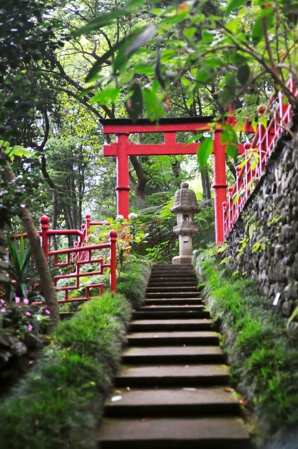Jardin tropical de palais de Monte photo libre de droits