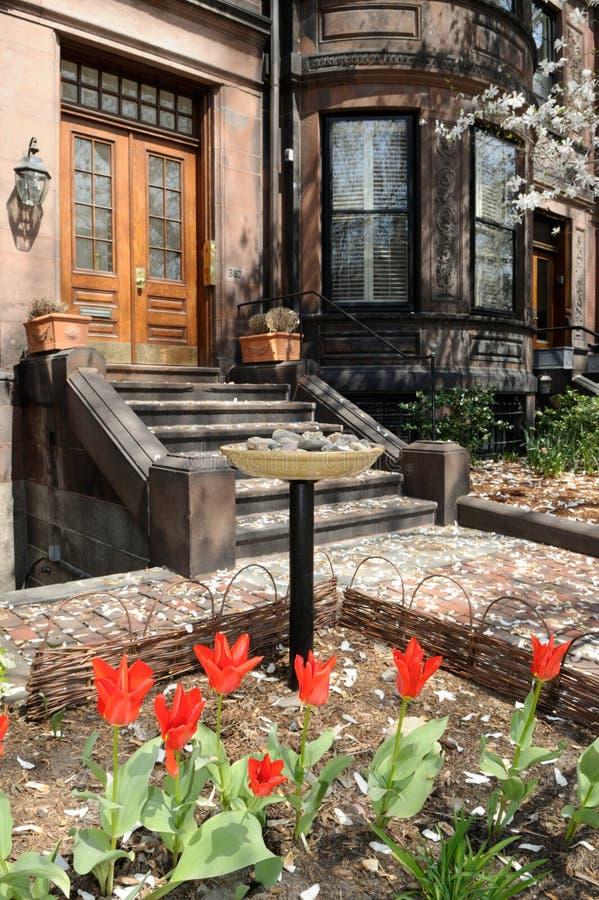 Jardin urbain dans le compartiment arrière photo stock
