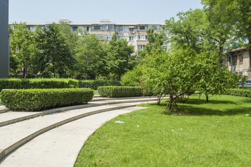 Jardin vert de campus image stock
