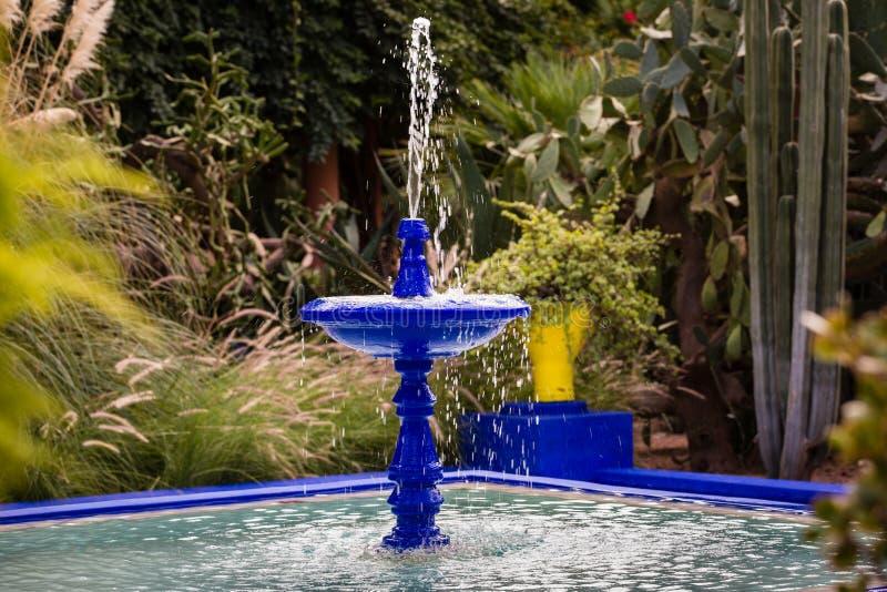 Jardin w Marrakesh Majorelle obrazy stock