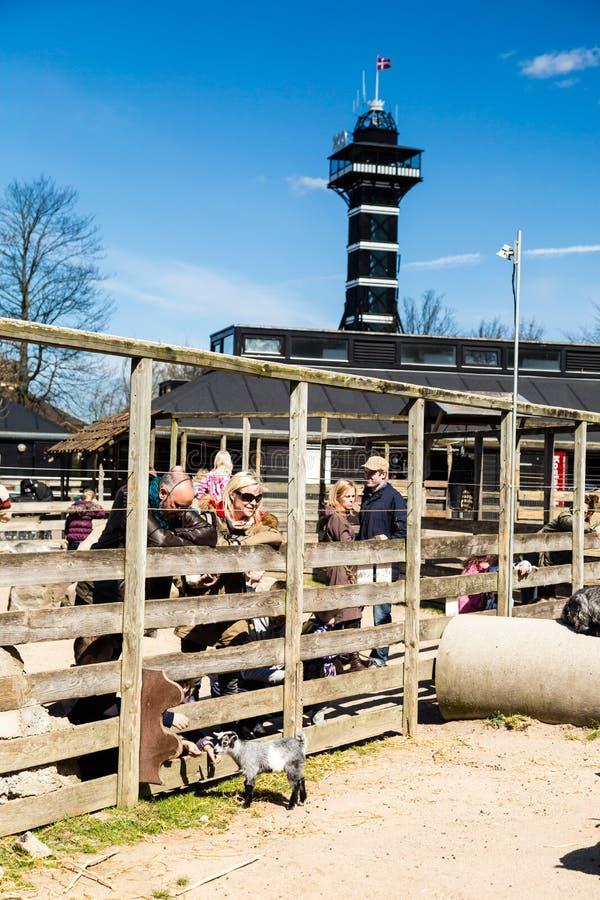Jardin zoologique de Copenhague image libre de droits