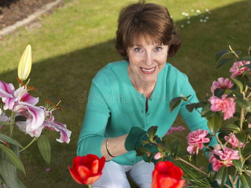 Jardinage aîné de femme photos libres de droits