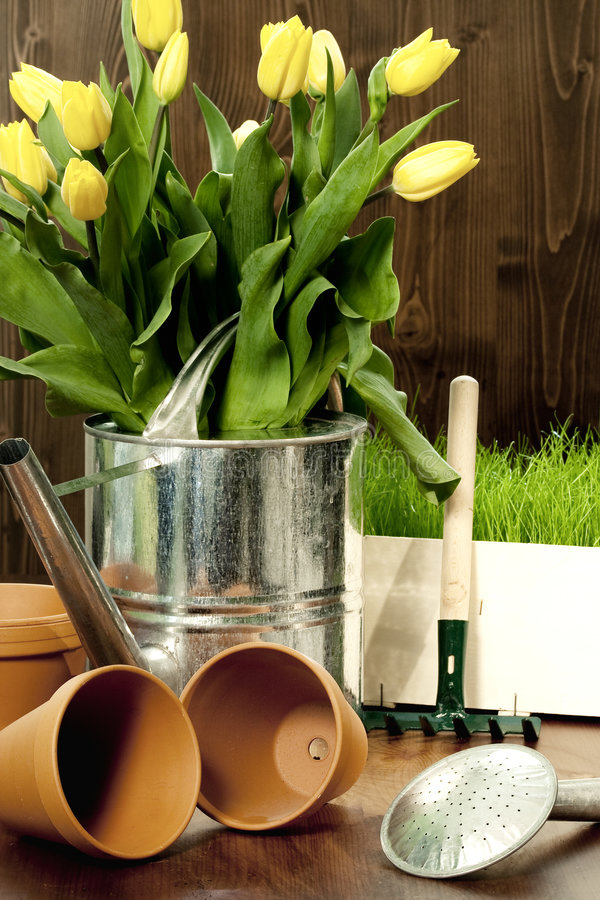 Jardinage de source photographie stock