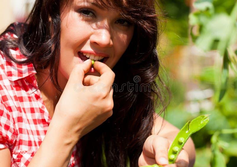 Jardinage en été - femme moissonnant des becs d'ancre images stock