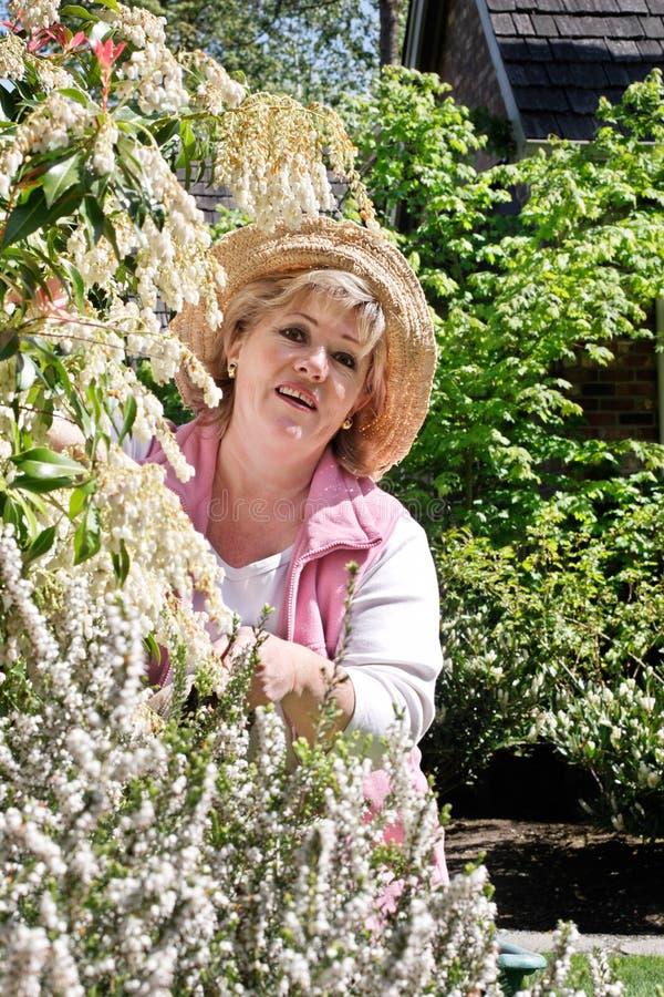 Jardinage mûr de femme images libres de droits