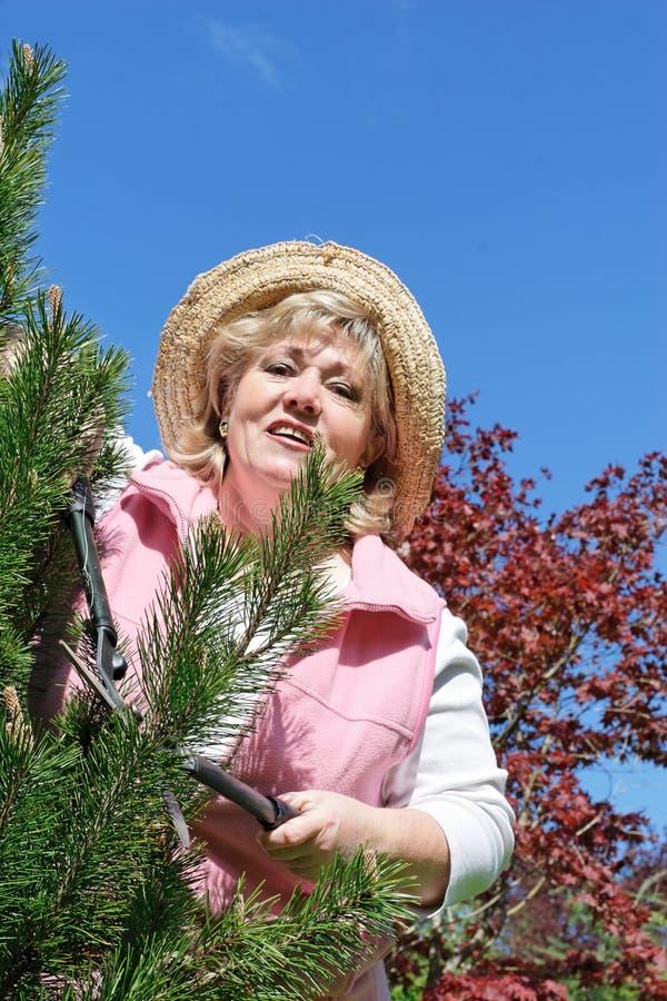 Jardinage mûr de femme photographie stock libre de droits