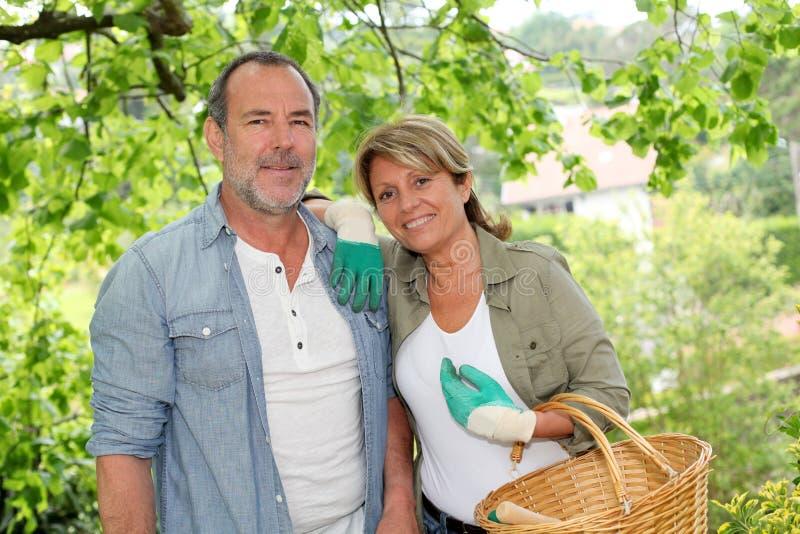 Jardinage supérieur heureux de couples image libre de droits