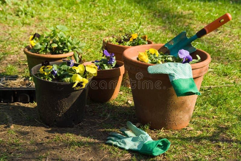 Jardinagem fotografia de stock royalty free