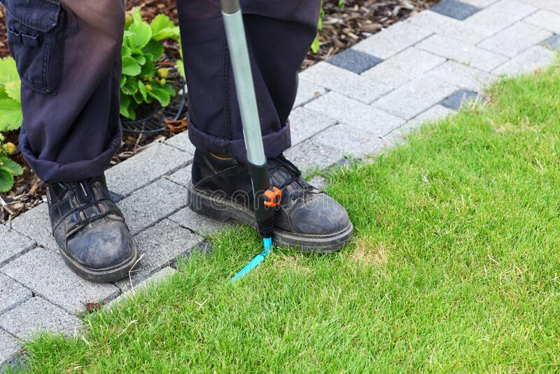 Jardinagem - jardinagem ao longo do caminho fotografia de stock