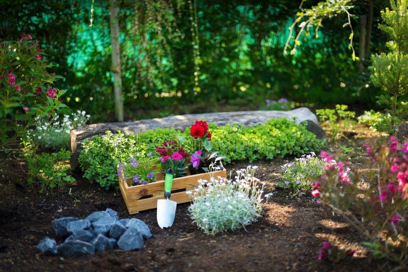 Jardinagem Caixa completamente de plantas lindos e de ferramentas de jardim prontas para plantar em Sunny Garden Trabalhos do jar fotografia de stock royalty free