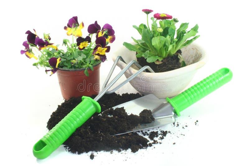Jardinagem com flores da mola imagens de stock royalty free