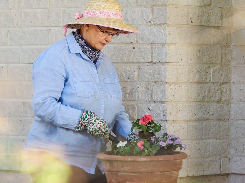 Jardinagem da mulher foto de stock