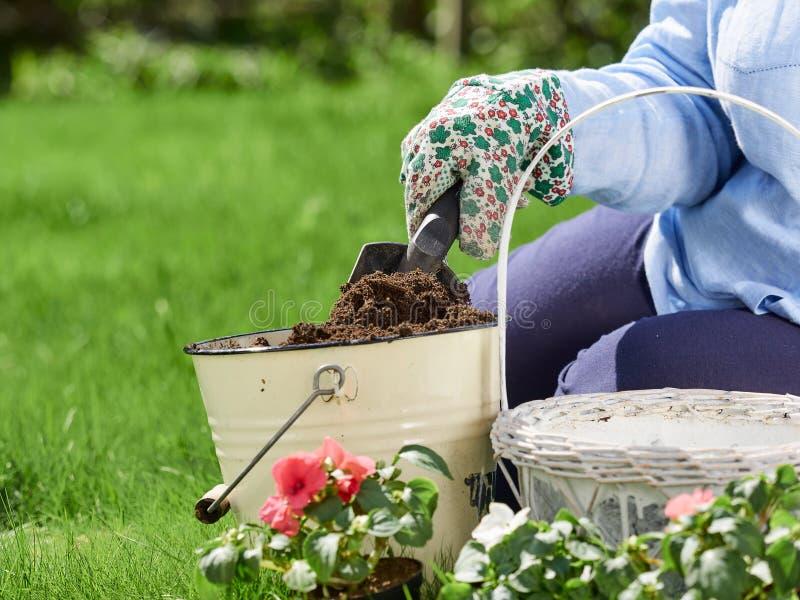 Jardinagem da mulher imagens de stock royalty free