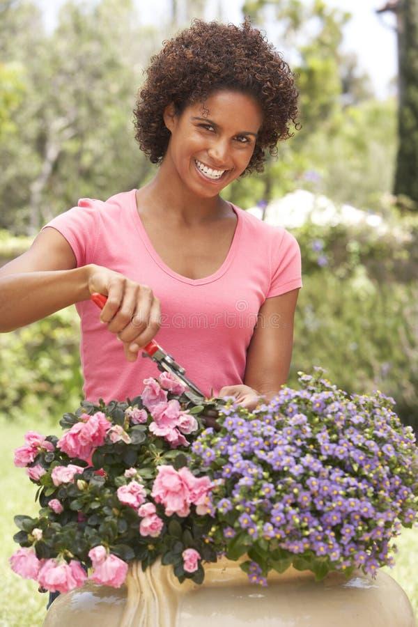 Jardinagem da mulher nova imagem de stock