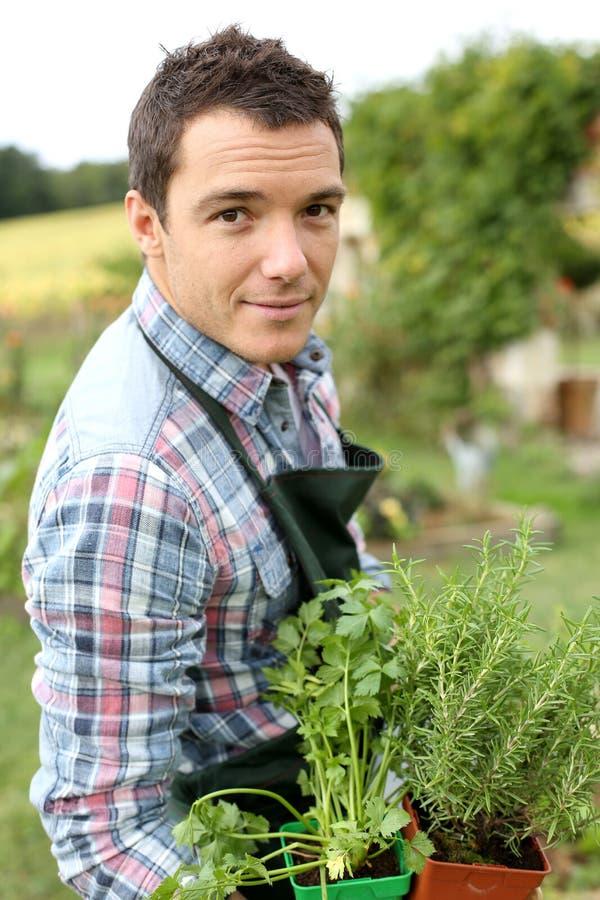 Jardinagem do homem novo foto de stock royalty free
