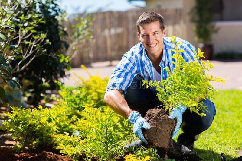 Jardinagem do homem novo imagem de stock royalty free