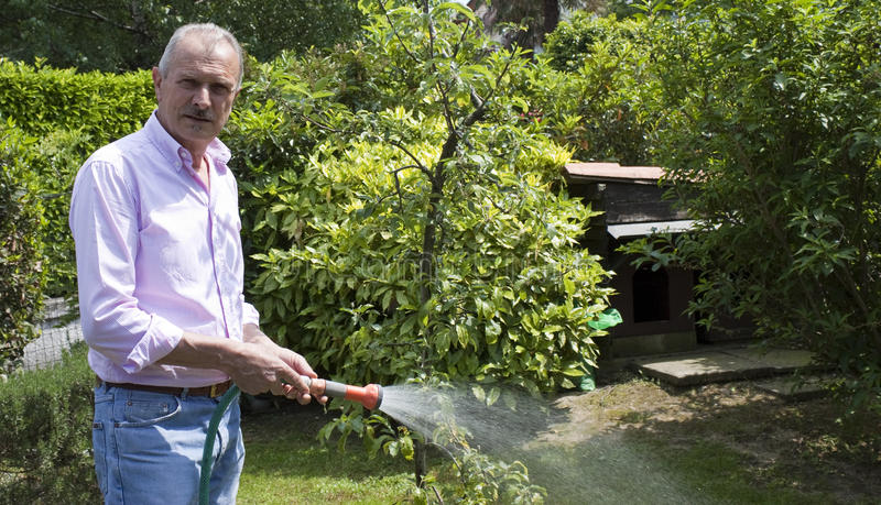Jardinagem do homem sênior imagens de stock royalty free