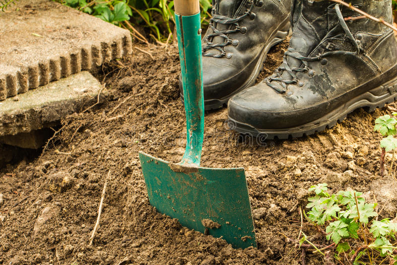 Jardinagem do trabalho Escavação aposentada para plantas foto de stock