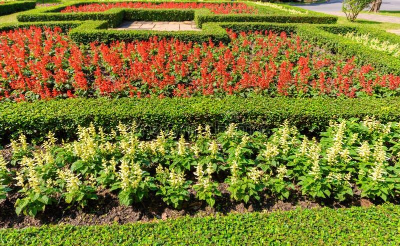Jardinagem e ajardinar fotos de stock royalty free