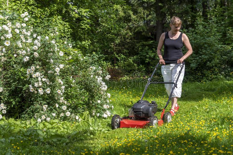 Jardinagem feminina no quintal foto de stock royalty free
