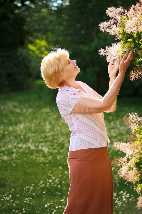 Jardinagem. Mulher superior gracioso e flores fotos de stock royalty free