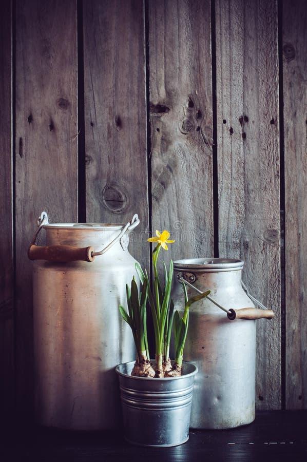 Jardinagem rústica imagem de stock