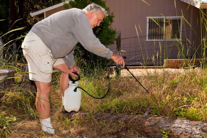 Jardinagem sênior fotografia de stock royalty free