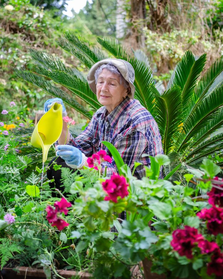 Jardinar estimula a mente e o corpo da mulher adulta superior fotografia de stock royalty free