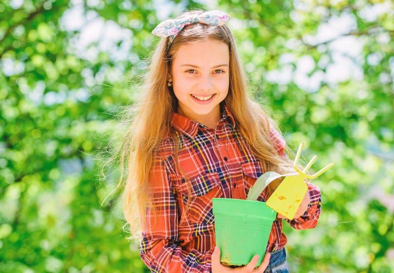 Jardinar ? ocupa??o meditativo calma. r. Educa??o da ecologia. Menininha plantando plantas. plantar imagem de stock