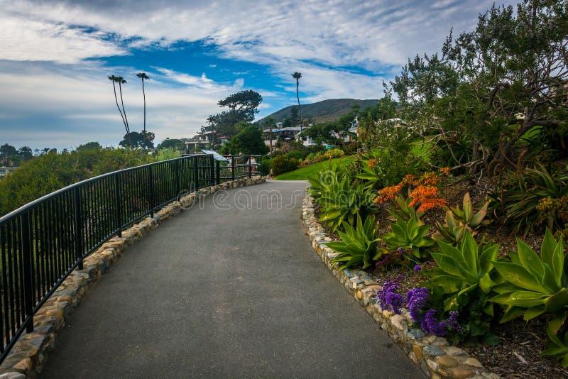 Jardine ao longo da passagem no parque de Heisler, no Laguna Beach fotografia de stock