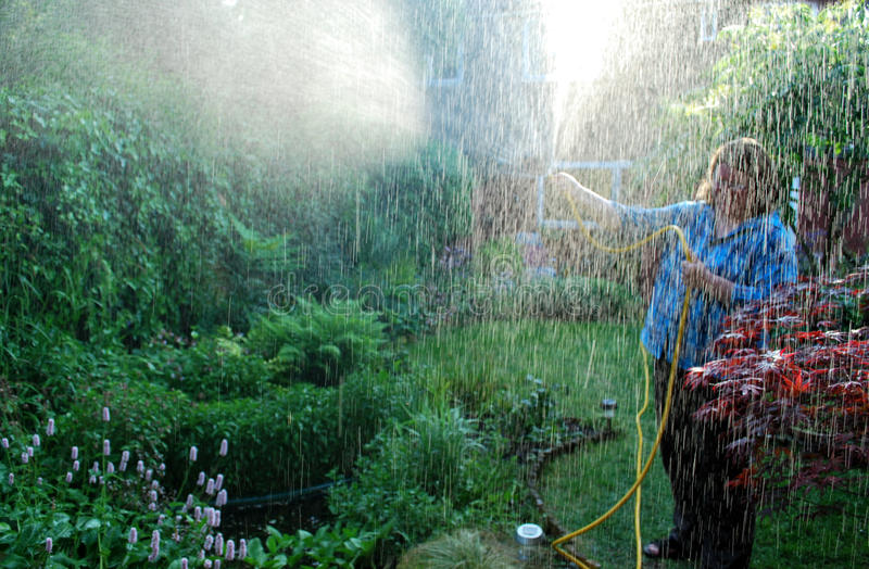 Jardineiro fotografia de stock royalty free