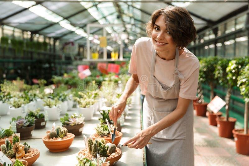 Jardineiro bonito da mulher que está sobre plantas das flores no funcionamento da estufa imagem de stock royalty free