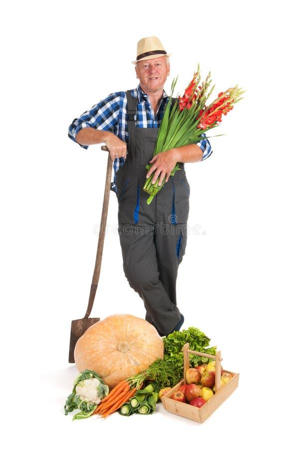 Jardineiro com colheita fotos de stock royalty free