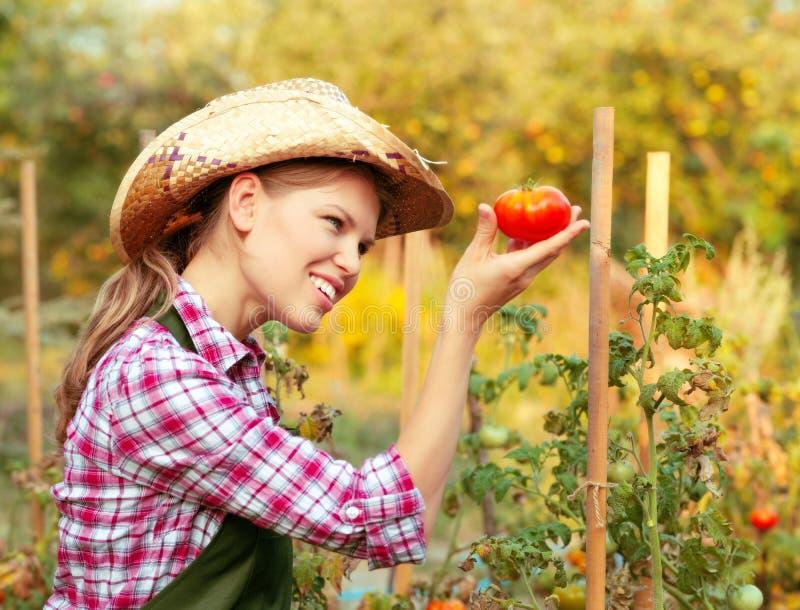 Jardineiro da mulher fotos de stock royalty free