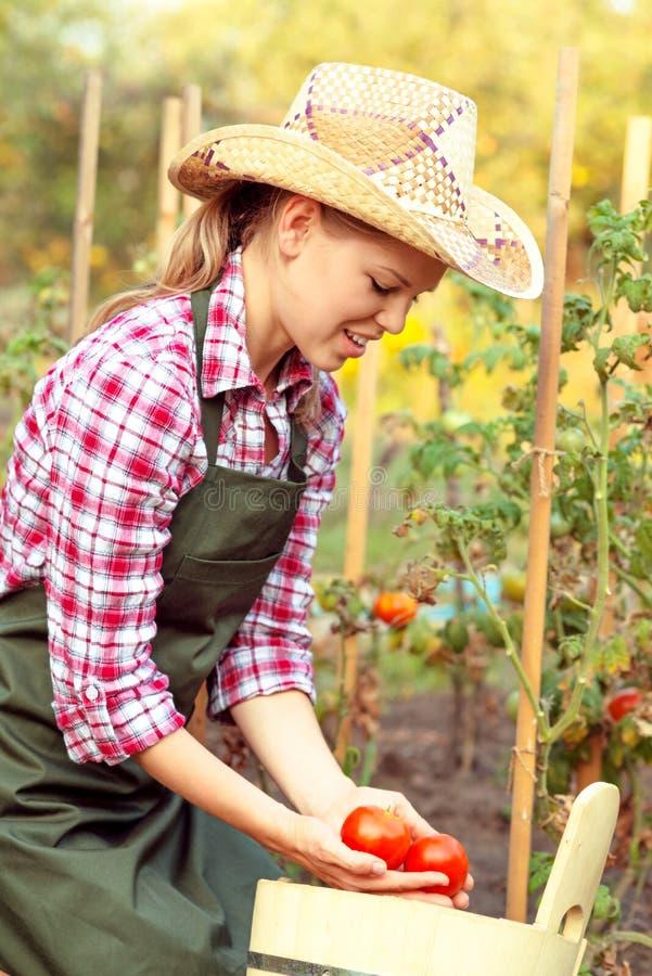 Jardineiro da mulher imagens de stock